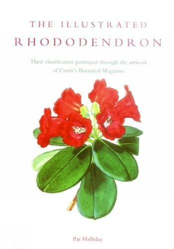 Download Illustrated Rhododendron PDF