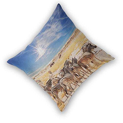 Khdkp Africa Pillowcase, Zebras in Savannah Desert Waterhole on Hot Day Africa Safari Adventure Land Print Home Decorative Throw Cushion Case for Couch/Bed/Sofa, W26 xL26 Multicolor