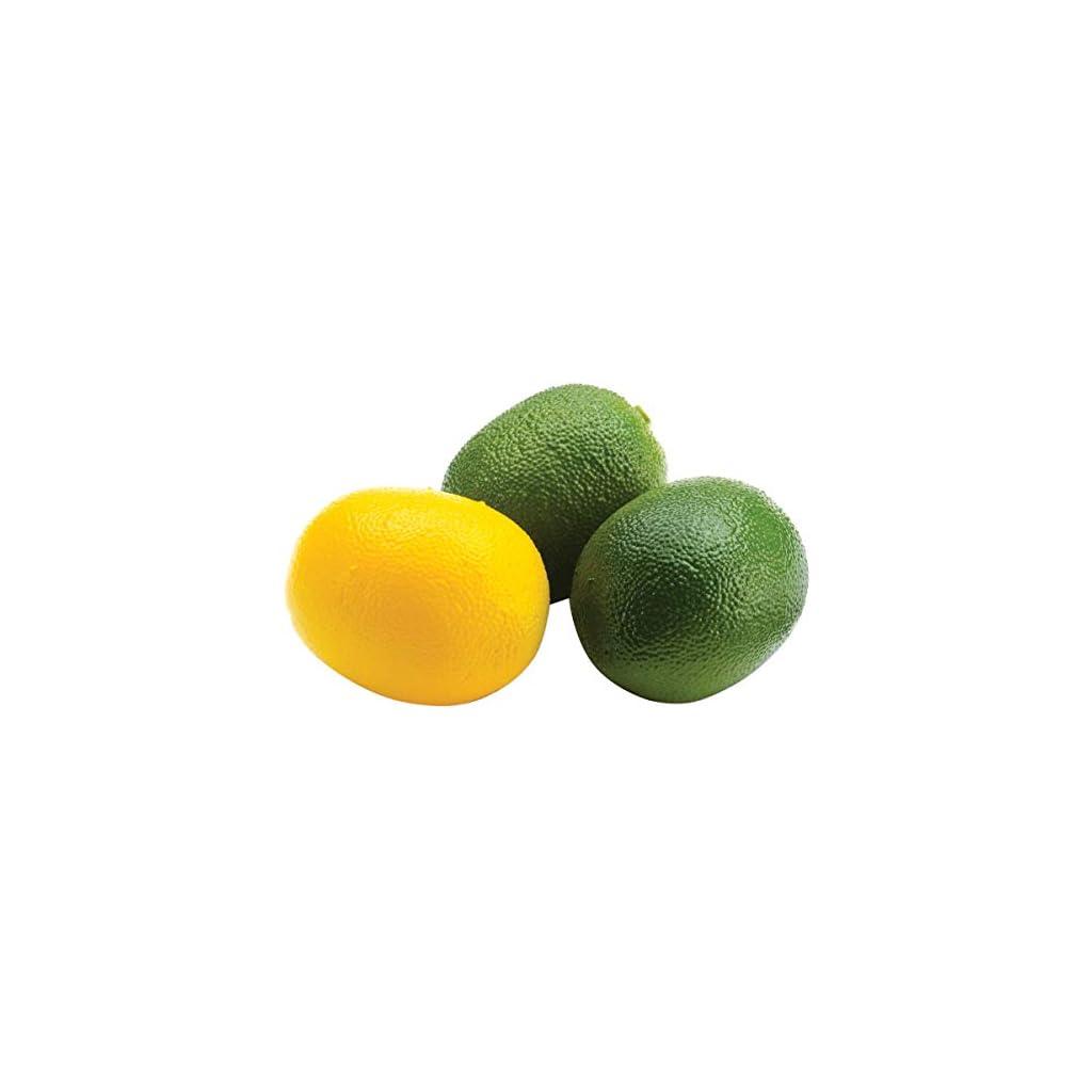 FloraCraft-Design-It-Simple-Decorative-Fruit-13Pkg-Mini-Lemons-and-Limes