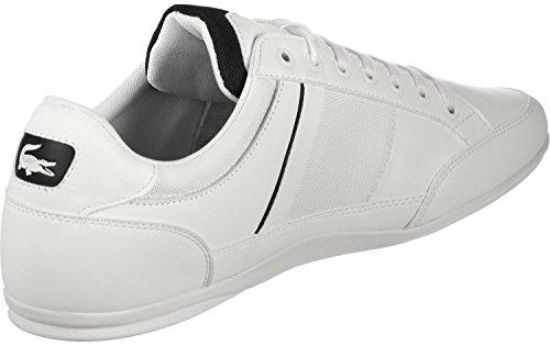 Herren Weiã Herren Chaymon Lacoste Sneaker Lacoste Lacoste Weiã Sneaker Chaymon Chaymon Sneaker xqwpq6vEf