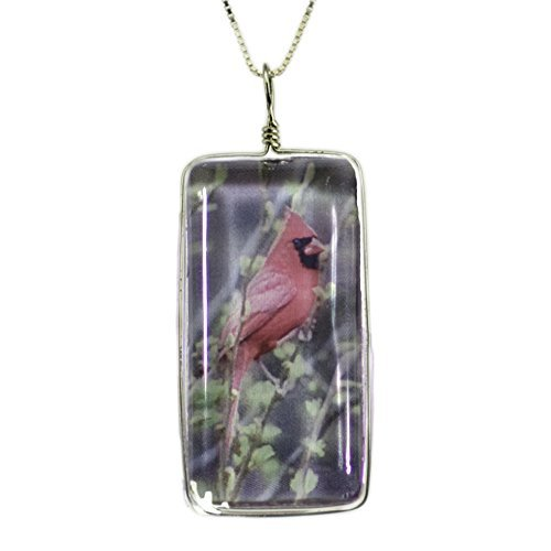 Handmade Glass Bird Necklace on Sterling Silver: Original Cardinal Image Fused to Artisan Made Pendant on Italian Sterling Silver Box Chain