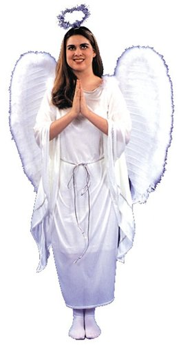 Angel Dress Costume (One Size)