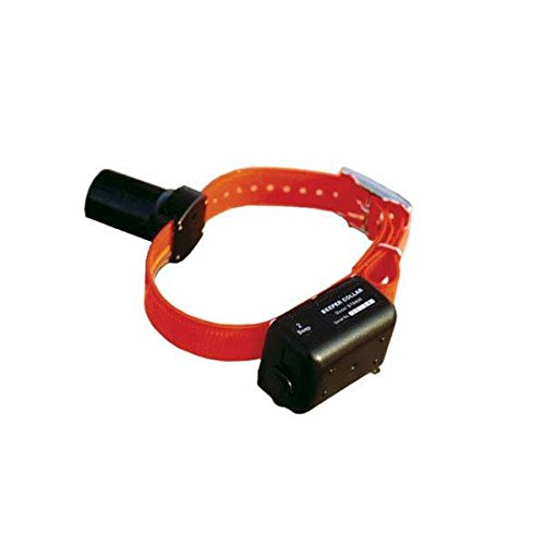 - D.T. Systems Baritone Beeper Collar