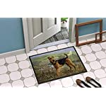 Caroline's Treasures HMHE0245MAT Airedale Terrier The Kings Country Indoor or Outdoor Mat 18x27, 18H X 27W, Multicolor 4
