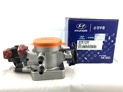 Genuine Hyundai 35100-37300 Throttle Body Assembly (Genuine Throttle Switch)