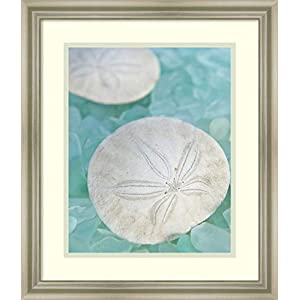 41i3RuOnSzL._SS300_ Best Sand Dollar Wall Art and Sand Dollar Wall Decor For 2020