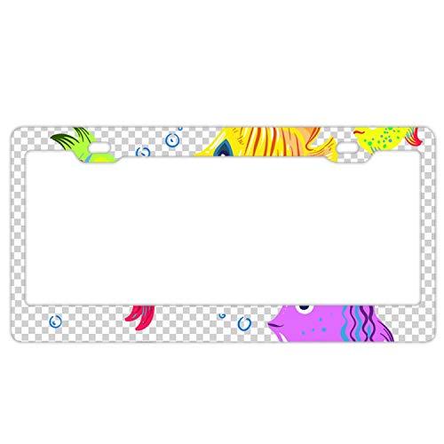 - Boeshkey Inlaid Standard License Plate Frame,Alumina,6