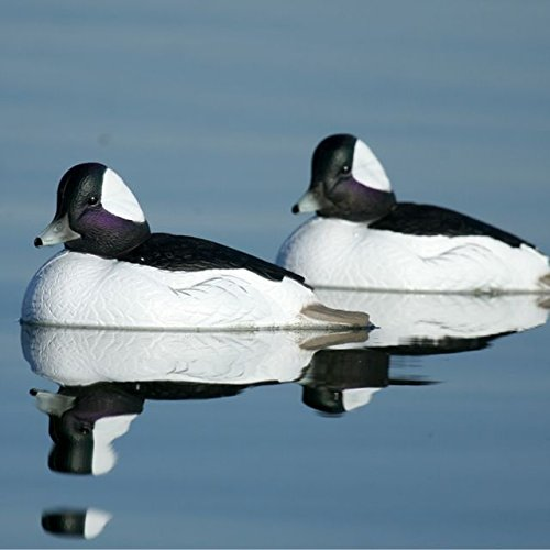 Hunting Gear Over-Size Buffleheads (1/2 Dozen) by Avery (Image #8)