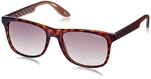 S Carrera Brown Brown Havana Marrón Sonnenbrille CARRERA Sf 5025 qBwBRr4t