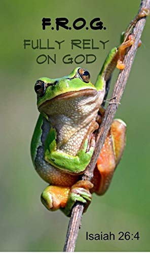 (Biblebanz Fully Rely On God Frog Magnets Christian Party Favors (10)