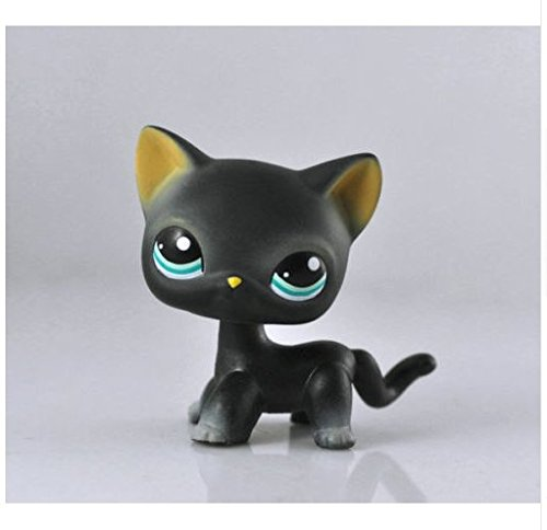 Littlest Pet Shop toys LPS Collector Toy LPS Collectible Replacement Figure Loose rare Standing cat mask Short Hair for kids gift - (Grey/White)1pc (Littlest Pet Shop Shorthair Cats)