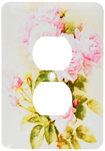 3dRose lsp_151447_6 Paul De Longpre Shabby Chic Vintage Pink Roses Sun-Faded Antique Flowers Fine Art Girly Floral 2 Plug Outlet - Outlet Cover Floral