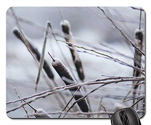Dark Brown Broadleaf - Mouse Pad - Nature Broadleaf Brown Burlush Cattail Cattails