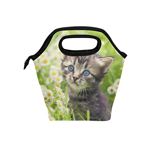 (Lunch Box Greater Lafayette Cat Womens Insulated Lunch Bag Kids Zipper Lunch Tote)