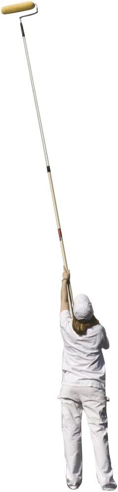 2-4 feet Wooster Brush SR090 Sherlock GT Convertible Extension Pole Renewed