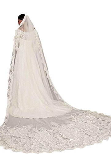 Passat Pale Ivory Single-Tier 3M Cathedral scalloped edge With lace Full 2018 wedding veil DB74 by Passat