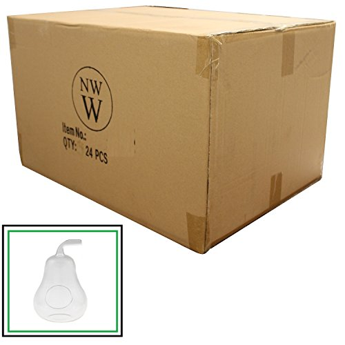 NW Wholesaler - Glass Pear Shaped Terrarium - Case of 24 by NW Wholesaler