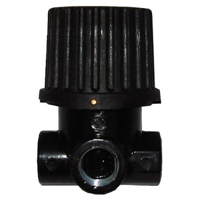 Powermate Vx 019-0281RP 1/4-Inch NPT Inlet/Outlet by 1/4-Inch NPT Gauge Pressure Regulator