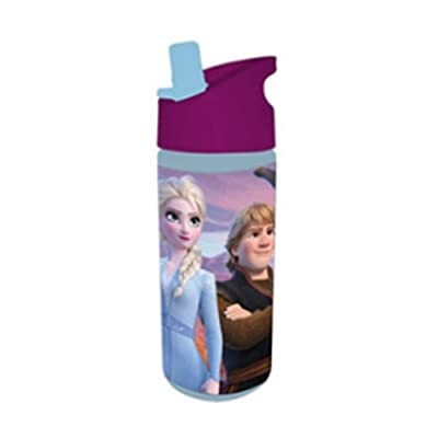 Danawares Frozen 2 Water Bottle with Soft Sipper Spout Age/Grade 3+: Toys & Games