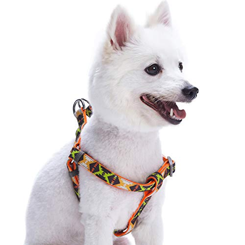 Blueberry Pet 2 Colors Soft & Comfy Step-in Vintage Tribal Pattern Padded Dog Harness, Chest Girth 19.5
