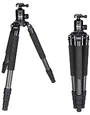 Rollei Rock Solid inkl Kugelkopf T7S Carbon Stativ - Kamera Stativ mit 30 KG Tragkraft, ideal für Reise und Naturfotografie - geeignet für Spiegelreflex-(DSLR) u. Systemkameras (DSLM)