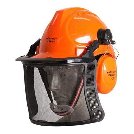 Kit antienvejecimiento y protección forestal: gafas y casco ...