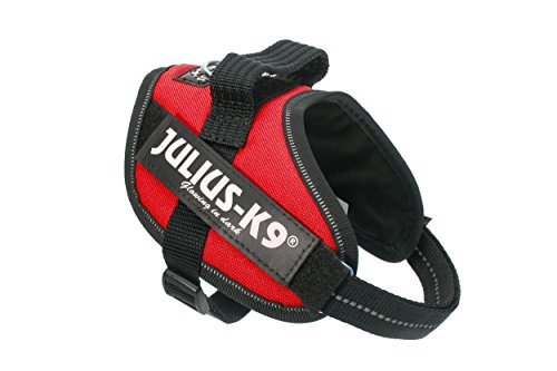 Julius-K9, 16IDC-R-M, IDC Powerharness for Dogs, Size: Mini, Red