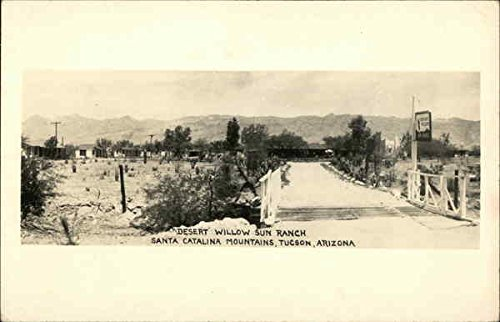 desert-willow-sun-ranch-santa-catalina-mountains-tucson-arizona-original-vintage-postcard