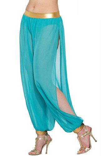 Harem Girl Costume Plus Size (Belly Dancer Harem Pants Adult Costume (Green))