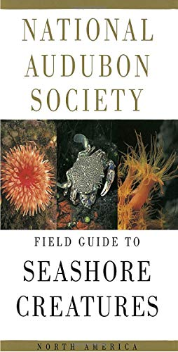 National Audubon Society Field Guide to Seashore Creatures: North America (National Audubon Society Field Guides)
