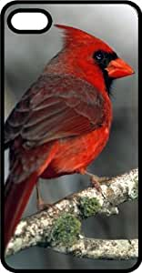 Male Red Cardinal Virginia State Bird Black Plastic Case for Case Cover For Apple Iphone 4/4S