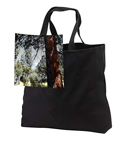 Jos Fauxtographee- Selective Color Green - Using selective color on the camera a forest with brown and green - Tote Bags - Black Tote Bag JUMBO 20w x 15h x 5d (tb_300916_3)