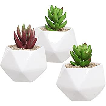 Amazon gelive succulent plant pot diamond macaron ceramic set of 3 white ceramic succulent plant pots geometric design miniature indoor planters 3 mightylinksfo