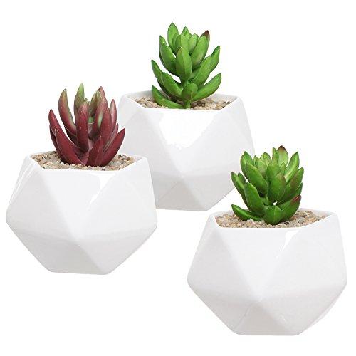 Ceramic Succulent Geometric Miniature Planters