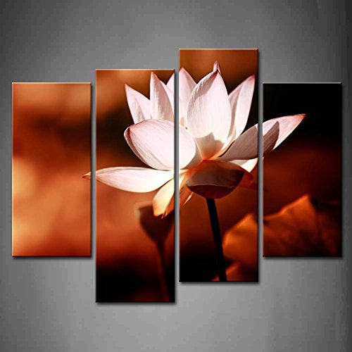 First Wall Art - 4 Panel Wall Art Pink Lotus Flower Blossom At Night Painting Pictures Print