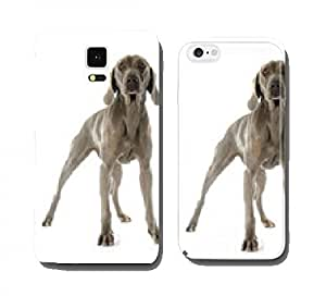 Weimaraner cell phone cover case Samsung S3