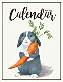 2019-2020 Calendar: Two Years | January 2019 to December 2020 Daily Weekly Monthly Calendar Planner With To Do List | Happy Rabbit Cover