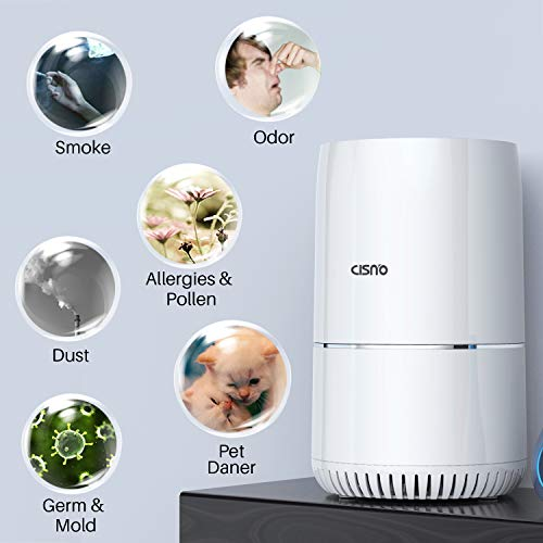 Buy room air cleaner with washable hepa filter