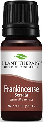 Plant Therapy Frankincense Serrata Essential Oil. 100% Pure, Undiluted, Therapeutic Grade. 10 mL (1/3 Ounce).