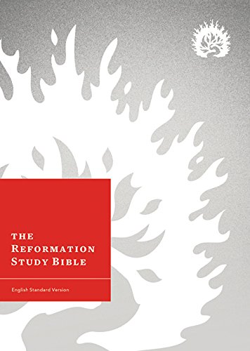 reebok shoes the reformation study bible review