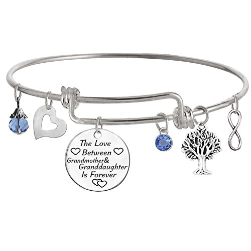 TISDA The Love between a Grandmother and Granddaughter is Forever Bracelet Family Jewelry Christmas Gift (L December)
