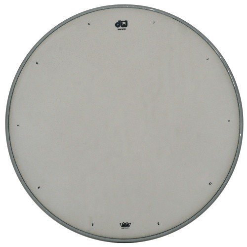 DW 14'' Coated Snare Drum Batter Head