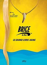 Brice de Nice, le grand livre jaune par Pauline Roland