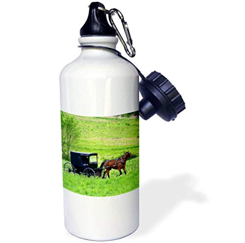 Amish Farm With Horse Buggy Near Berlin Ohio White Funny Water Bottle for Kids Stainless Steel Insulator Travel Cup 21oz