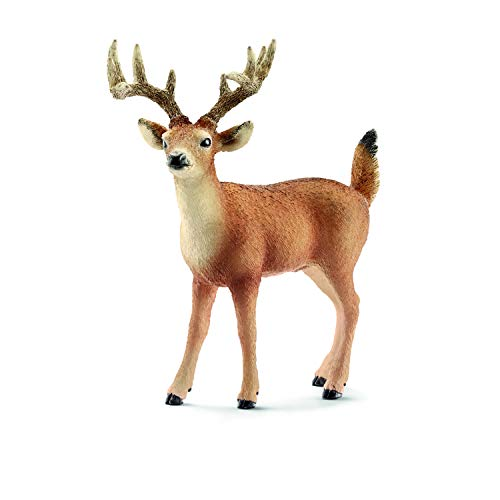 Schleich White-Tailed Buck Toy - Species Wood For Toys Safe Kids