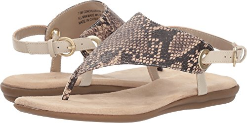 - Aerosoles Women's Conchlusion Sandal, Brown Exotic, 7.5 M US