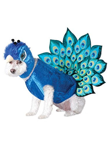 Animal Planet Peacock Dog Costume, X-Small, Multicolor -