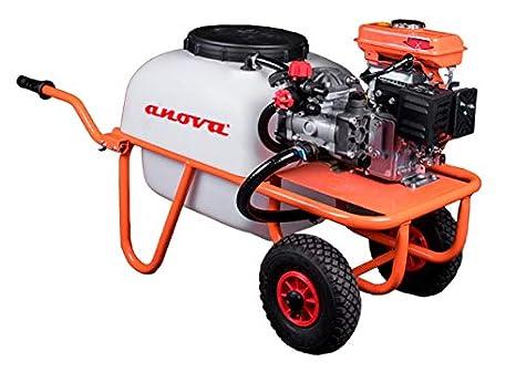 CARRETILLA SULFATADORA ANOVA MOTOR 4T P50-2: Amazon.es ...