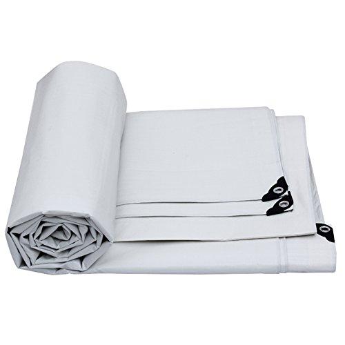 うがい薬心配する拒絶PENGFEI 防水シート 雨よけ キャノピー 日焼け止め 屋外 シェード 防風 耐候性、 厚さ0.32MM、 -157 g /m²、 2色、 4サイズのオプション ( 色 : 白 , サイズ さいず : 6x4M )