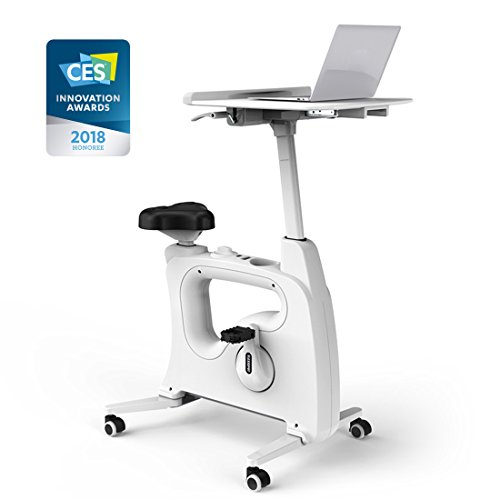 FLEXISPOT Home Office Standing Desk Exercise Bike Height Adjustable Cycle – Deskcise Pro – DiZiSports Store